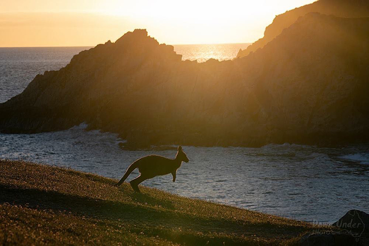 Sunset at Blowhole Beach